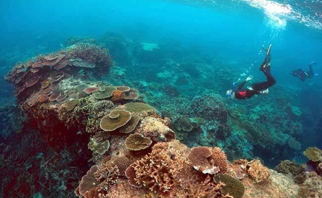 great-barrier-reef