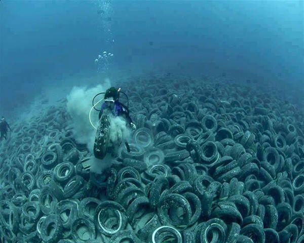 tires-florida-reef